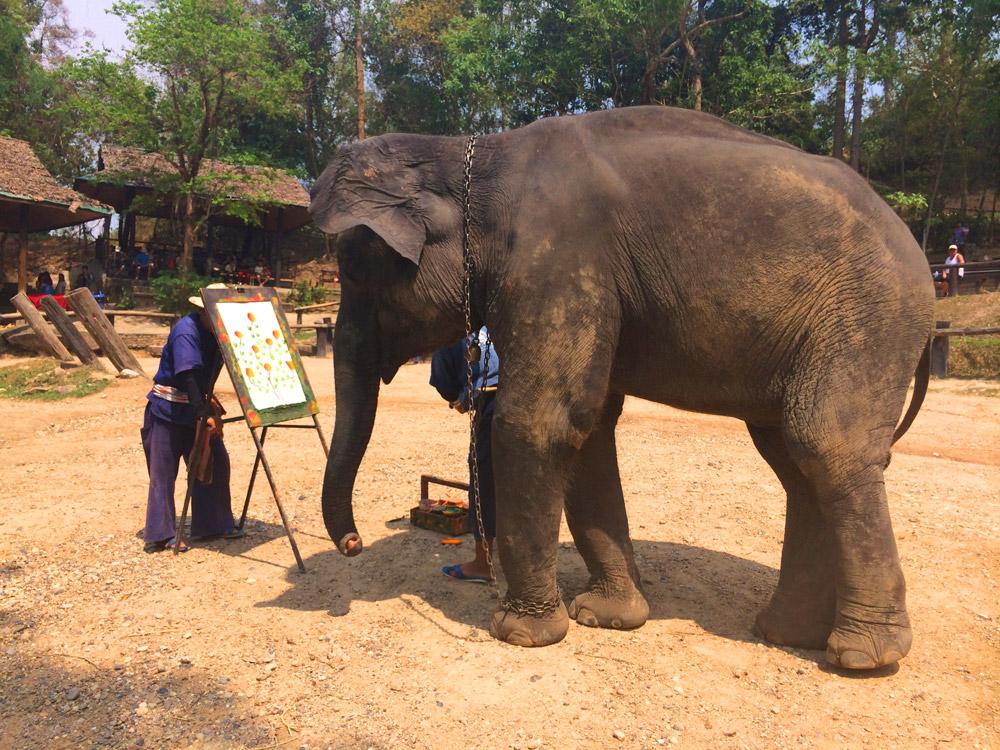 Elefante desenhando